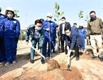 Fête de plantation darbres lancée à Hanoï