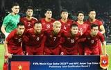 베트남 남자축구 대표팀 월드컵 최종예선 진출 기대