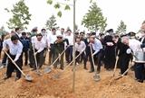 Le PM lance le programme de plantation dun milliard darbres à Tuyen Quang