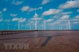 Дания уделяет приоритетное внимание поддержке Вьетнама в развитии зеленой энергетики