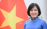베트남 WTO의 수산물 지원 관련 협상에 참여