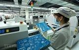 Всевьетнамская экономическая перепись начинается 1 марта