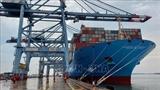 За первые два месяца количество иностранных судов снизилось на 6%