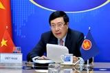 Неофициальная встреча министров иностранных дел стран АСЕАН: Вьетнам сотрудничает с другими странами в борьбе с эпидемией