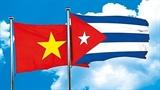 Efectúan Vietnam y Cuba VI ronda de Consultas Políticas Intercancillerías
