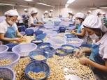США - крупнейший импортер сельскохозяйственной лесной и рыбной продукции Вьетнама в январе-феврале