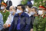 Начался судебный процесс по делу завода по производству этанола в Футхо