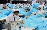 Усилия сократить гендерный разрыв во Вьетнаме