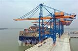 Объем контейнеров через морские порты Бариа-Вунгтау вырос на 21%