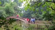 Bản nhạc rừng xanh giữa lòng thành phố Thái Nguyên