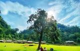 Вьетнам становится широко известным на карте мирового туризма