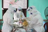 Во Вьетнаме за последние 12 часов зарегистрировано 37 новых случаев заражения COVID-19 внутри страны