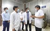 Inspecciona la seguridad de la cadena de suministro la producción ganadera en los dos distritos de Thanh Oai y Chuong My