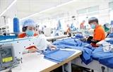 Ханой планирует к 2030 году увеличить долю обученных рабочих до 80%