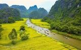 Стартовал фотоконкурс для иностранцев во Вьетнаме