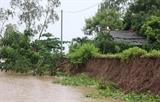 На прибрежной набережной Камау обнаружена эрозия