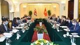 Министр иностранных дел Буй Тхань Шон провел переговоры с первым министром министром иностранных дел и развития Великобритании Доминик Рааб