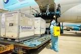 백신 운반 항공기에 우선 착륙권 부여