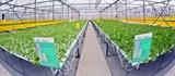Hà Nội phát triển chuỗi cung ứng nông lâm thủy sản an toàn