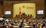 Первая сессия 15-го Национального собрания: представлены важные отчеты
