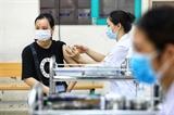 하노이 대규모 백신 접종 스타트