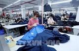 EVFTA - катализатор для вьетнамского бизнеса