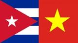 Relaciones tradicionales especiales Vietnam- Cuba