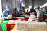 Почти 70% фирм в Тайнине возобновили производство