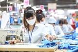 Разработаны различные политики для поддержки предприятий и рабочих пострадавших от COVID-19