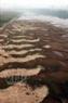 Diện tích bãi giữa ở khu vực cầu Long Biên ngày càng mở rộng và bị cát hóa do sông Hồng thiếu nước.