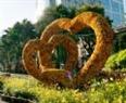 Hàng ngàn cánh hoa được các nghệ nhân kết thành hình trái tim tại Đường Hoa Nguyễn Huệ Canh Dần 2010.