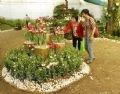 Hoa tuylip luôn hấp dẫn khách tham quan ở Hội Hoa Xuân Canh dần 2010.