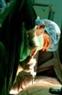 Bác sĩ Dương Bá Trực tiến hành lấy tủy từ cháu Đặng Thu Thảo.