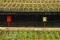 La época de musgo se inicia en el techo de teja doble.