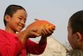 Thuy Tram children and the red carp.