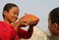 トゥイチャム集落の子どもたちと赤い色の鯉