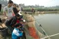 Ha Cong Ky and his family members (in Zone 3, Thuy Tram Village) catching the carp.