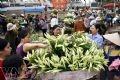 Chợ hoa Quảng Bá dịp này cũng có nhiều hoa loa kèn trắng.