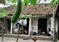 钟村制笠业的一家庭。