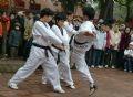 Démonstration de lutte par des jeunes de l'arrondissement Hai Ba Trung