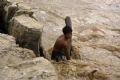 Mặc cho dòng nước lũ chảy xiết, chú bé người Dao ở huyện Bát Xát (Lào Cai) vẫn nhoài người ra sông vớt củi.