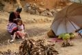 Không kiếm củi, cô bé Mông này lại theo mẹ đi bán gừng trên đường 4D ở xã Chung Chải (Sa Pa – Lào Cai).