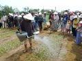 Tưới nước sau khi hoàn thành cuộc thi trồng rau.