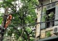 Ngay cả trên cao, sự nguy hiểm cũng rình rập bởi cành cây gãy và dây diện bị đứt.