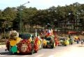 Цветочное шествие