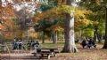 Rừng là nơi lý tưởng cho nhiều gia đình thư giãn vào dịp cuối tuần.