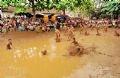 Sân thi đấu vốn là sân hành lễ trước cửa đền, rộng hơn 200m2 và chứa đầy bùn lỏng.