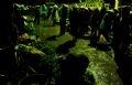 トータンの夜市にやって来て野菜を売る女性