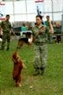 The Professional Dog School's members participating in the contest.