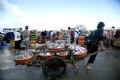 Для перевозки рыбы используют различные виды транспорта